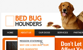 Bed Bug Hounders
